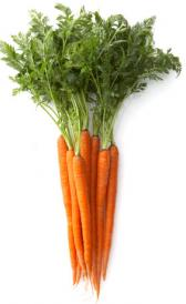 junior carrots